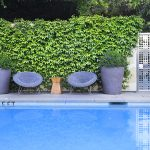 TRAVEL: HOTEL HEALDSBURG