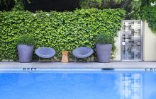 HOTEL HEALDSBURG, HEALDSBURG CALIFORNIA, CA, CALIFORNIA, NORTHERN CALIFORNIA, TRAVEL HOTEL HEALDSBURG, WINE COUNTRY, SONOMA HOTELS, SONOMA, PASSPORT TO DRY CREEK VALLEY,